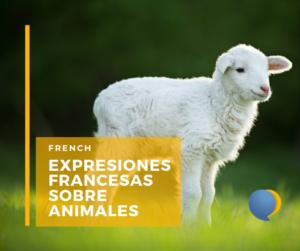 Expresiones de animales en francés